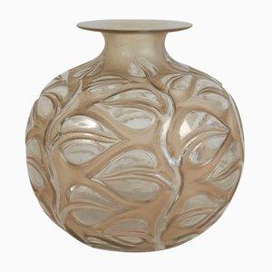 Vaso Sophora vintage di René Lalique