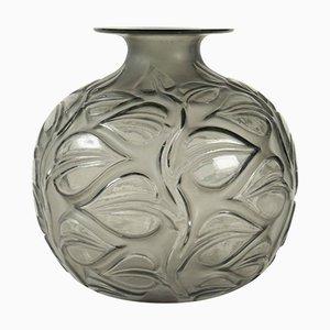 Jarrón Sophora vintage en gris de René Lalique