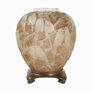Antique Frosted & Sepia Stained Perruches Vase by Rene Lalique