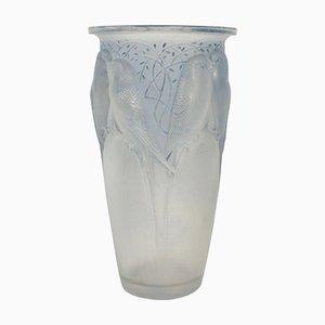 Vase Ceylan Bleu Dépoli par René Lalique, 1924