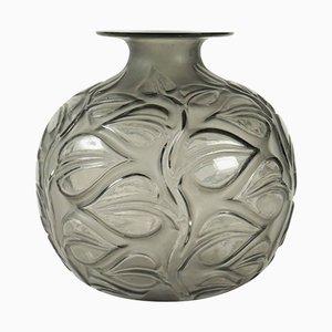 Jarrón Sophora vintage gris de René Lalique