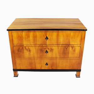 Biedermeier Cherrywood Chest of Drawers, 1820s
