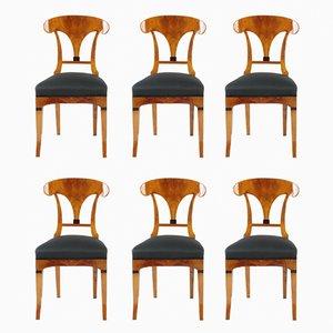 Antique Biedermeier Cherry Chairs, 1820s, Set of 6