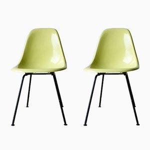 Vintage DSX Stühle aus Glasfaser von Charles & Ray Eames für Herman Miller, 2er Set
