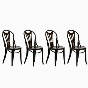 Art Nouveau Chairs, 1920s, Set of 4