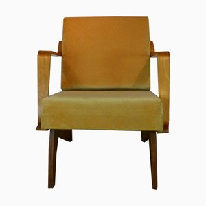 Lounge Chair by Cees Braakman for Pastoe, 1950s