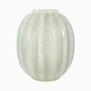 Vaso Biskra vintage in vetro di René Lalique