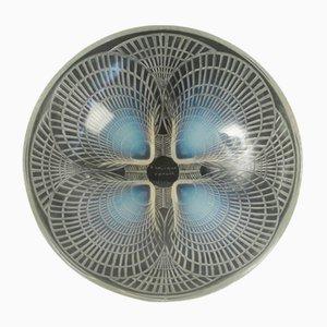Cuenco Coquille vintage de René Lalique