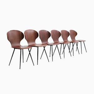 Mid-Century Esszimmerstühle von Carlo Ratti, 1950er, 6er Set