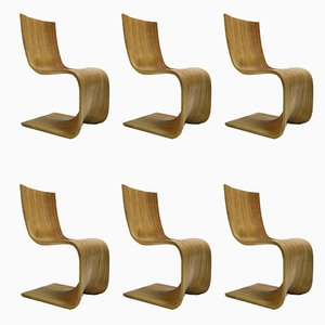 Chairs by Alejandro Estrada for Piegatto, 2006, Set of 6