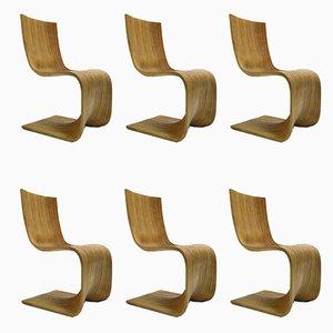 Contour Chairs by Alejandro Estrada for Piegatto, 2006, Set of 6