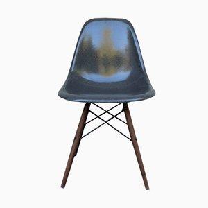Elefantengrauer DSW Stuhl mit Stiftbeinen von Charles & Ray Eames für Herman Miller, 1960er