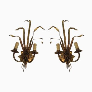 French Wheat Gild Metal Sconces, 1960s, Set of 2