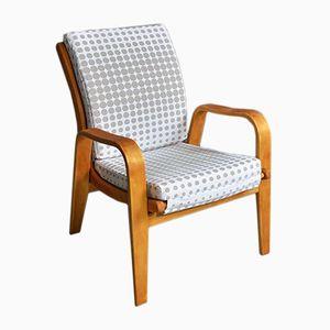 Vintage Model FB06 Armchair by Cees Braakman for Pastoe