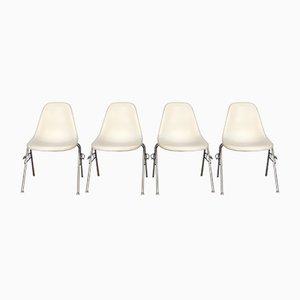 Sedia DSS di Charles & Ray Eames per Herman Miller, anni '50, set di 4