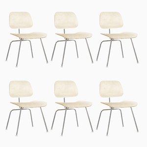 DCM Chairs von Charles & Ray Eames für Herman Miller, 1970er, 6er Set