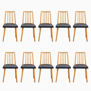Czech Dining Chairs from Interier Praha, 1960s, Set of 10