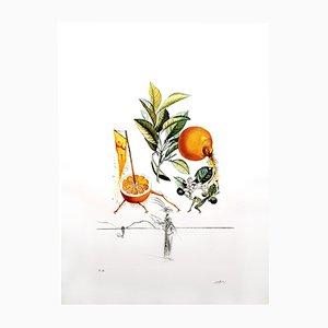 Litografia Erotic Grapefruit di Salvador Dali, 1969