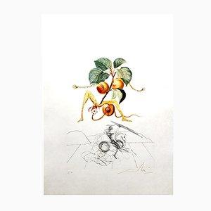 Apricot Lithografie von Salvador Dalí, 1969
