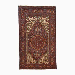 Antiker handgefertigter Bidjar Teppich, 1880er