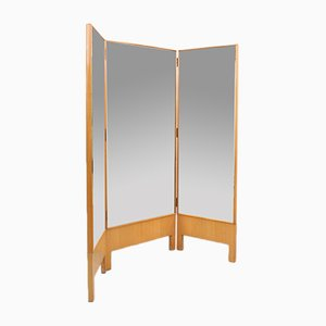 Vintage Italian Room Divider with Three Doors, 1960s