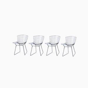 Sedie da pranzo Mid-Century di Harry Bertoia per Knoll International, set di 4