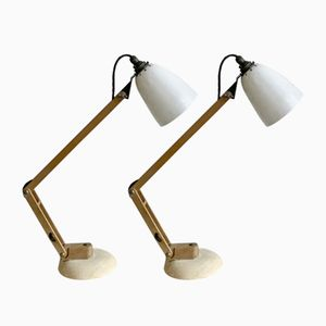 Vintage Anglepoise Desk Lamps by Terence Conran for Habitat, Set of 2