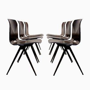 Industrial Wenge Model S22 Chair from Galvanitas, 1960s
