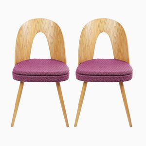 Dining Chair by Antonín Šuman for Tatra, Set of 2