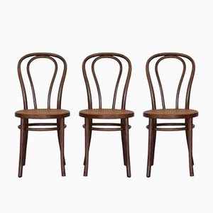 Chaises N°18 Vintage par Michael Thonet pour ZPM Radomsko, Set de 3