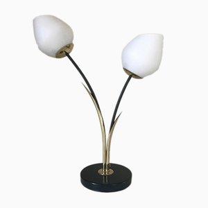 Lámpara Roseaux de Lunel, años 60