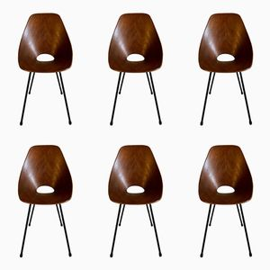 Mid-Century Rosewood Medea Dining Chairs by Vittorio Nobili for Fratelli Tagliabue, 1956, Set of 6