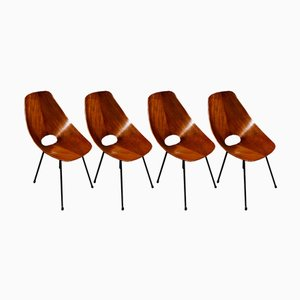 Mid-Century Rosewood Medea Dining Chairs by Vittorio Nobili for Fratelli Tagliabue, 1956, Set of 4