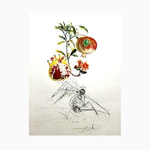Litografia Angel and Pomegranate di Salvador Dalì, 1969