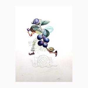 Plum Hand-Signed Lithographie von Salvador Dali, 1969