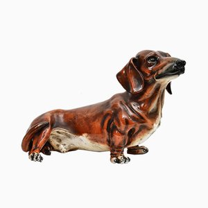 Perro salchicha italiano a tamaño natural de cerámica de Ugo Zaccagnini, años 60