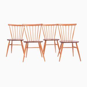 Esszimmerstühle von Ercol, 1960er, 4er Set