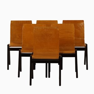 Beech Dining Chairs by Roland Rainer, 1950s, Set of 6