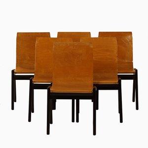 Esszimmerstühle aus Buche von Roland Rainer, 1950er, 6er Set