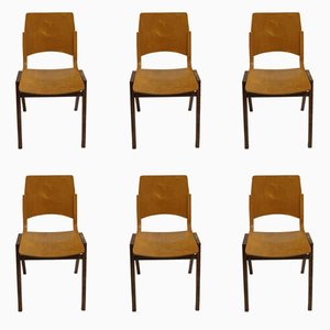 P7 Chairs by Roland Rainer, 1950s, Set of 6