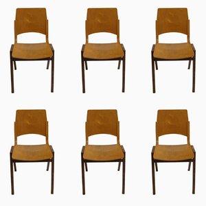 P7 Stühle von Roland Rainer, 1950er, 6er Set