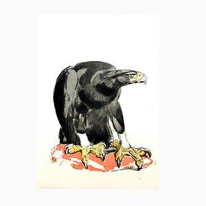 Grabado Eagle de Paul Jouve para Rombaldi Editions, 1950