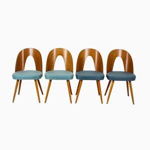 Esszimmerstühle von Antonin Suman für Tatra, 1960er, 4er Set
