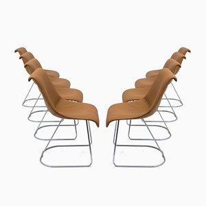 Talus Stühle von Vittorio Introini für Saporiti, 1970er, 8er Set