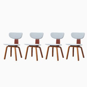SB37 Chairs by Cees Braakman for Pastoe, 1950s, Set of 4