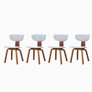 SB37 Stühle von Cees Braakman für Pastoe, 1950er, 4er Set