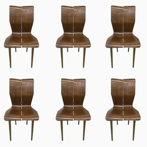 Curved Wood Dining Chairs, 1950s, Set of 6