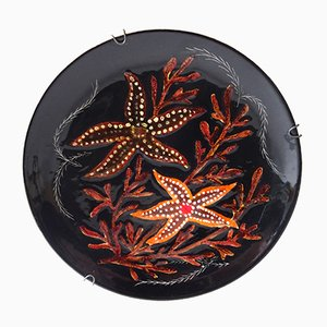 Starfish Seaweed Wall Plate by Henriot Quimper, 1950s