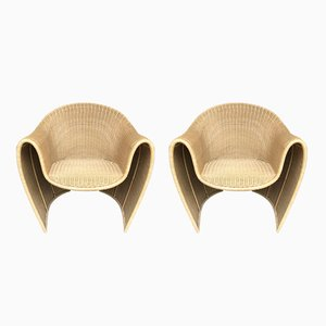 Italian King Tubby Rattan Armchairs by Platt & Young for Driade, 1998, Set of 2