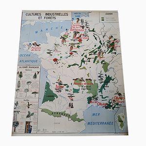 Carte Géographique à Double Face de la Garonne et de la Culture Industrielle et Forêt, 1960s